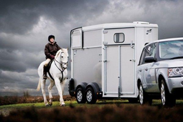 prikolica za prevoz konja IFOR Williams HB511